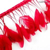 Перья петуха на ножках / Красные