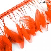 Перья петуха на ножках / Оранж