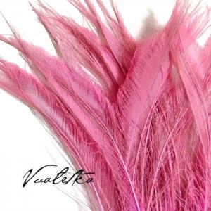 Перо павлина-меч / Розовый
