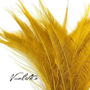 Перо павлина-меч / Желтый