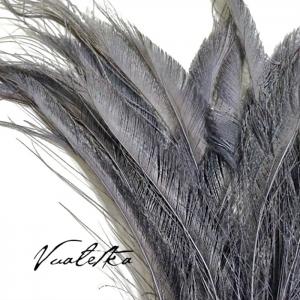 Перо павлина-меч / Серый