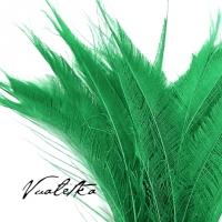 Перо павлина-меч / Зеленый