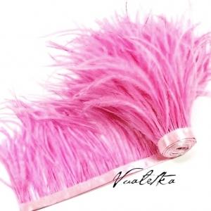 Перо страуса на ленте. Цвет: Розовый