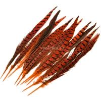Перо фазана/ Оранж