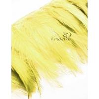 Перья на ленте. Цвет: Желтый